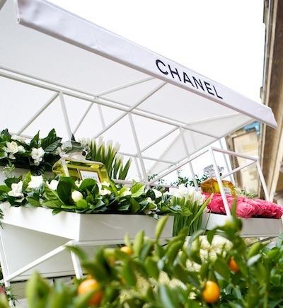 CHANEL flower cart orange tree copy